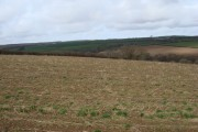 Farmland near Chollaton