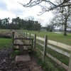 Boardwalk Footpath, Berkswell