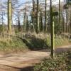 Fingerpost on the Wye Valley Walk