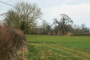 Farmland and trees, Preston