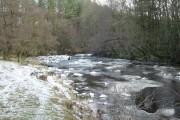 River Greta east of Brignall