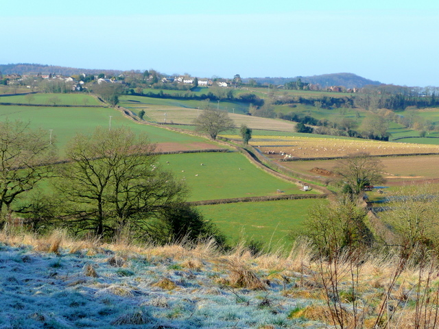 View from Linton Ridge