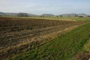Farmland near Frampton Court, Alderton