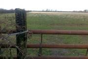 Field and Gate near Shipbrookhill