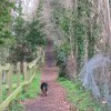 Footpath behind Woodland Close, originally from Tring to West Leith