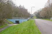 Bridge on Oakwood Drive