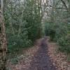 Bridleway, Lord's Wood