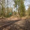 Bridleway junction in Lord's Wood