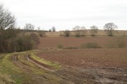 Fields off Hackmans Gate Lane