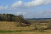 Grassland, Hamstead Marshall