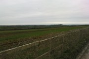 Stember farmland toward Crundal
