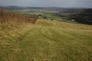 Footpath to Lewstone