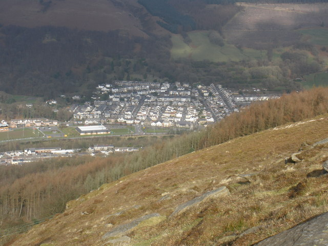 Looking down, on Mountain Ash, from Craig Darrenlas