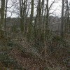 Woodland on Glade Hill