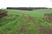 Farmland near Ashley