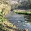 River Wye near Miller's Dale