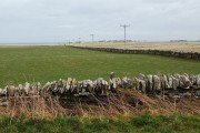 Stone dykes and telegraph poles