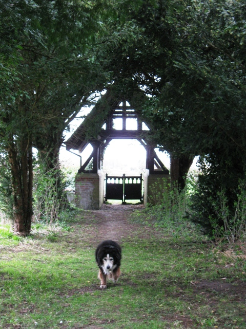 Lych Gate and Yew Tunnel, Wilstone Cemetery