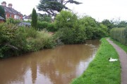 Cullompton : River Culm