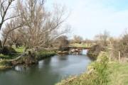 Small bridge across Cook's Stream