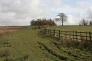 Wooded area near Houghtons Farm