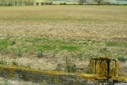 Farmland near Thunder Brook