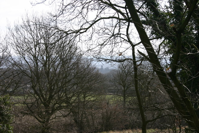 View of the mausoleum through trees from Hoober Stand