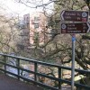 Footpath and NCN signs