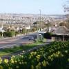 Daffodils, Dartmouth Road, Waterside, Paignton