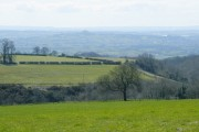 Fields and view near Lower Haydon Farm