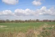 Farmland at Hambrook
