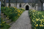 Path to Stoke St Mary Church