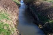 River Teise from Pikefish Lane bridge