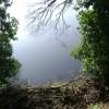 River Avon above Rock Mill, Leamington Spa