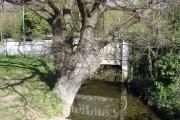Bridge over Belstead Brook