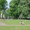 The Pump Room Gardens, Leamington Spa