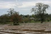 Farmland at Lowton
