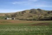 Farmland at Bowshank