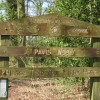 Pavis Wood