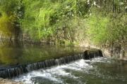 The River Rea, Cannon Hill Park