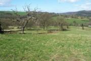 Farmland near Oughtibridge