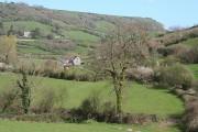Branscombe: towards Manor Mill