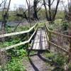 Footbridge on the River Ayr Way