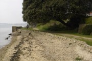 Vestigial beach at Shotley Gate