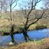 Afon Gwyrfai near Waunfawr
