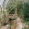 Bridge in Kemp's Wood (2)