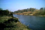 River Swale at Catterick