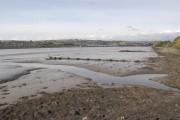 The Laira estuary, River Plym (1)