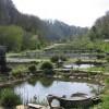 Horsley Mill fish ponds