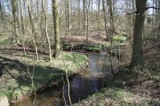 River Rase